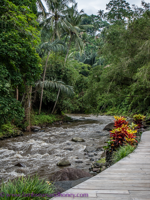 four seasons sayan ayung river, luxury accommodation in bali