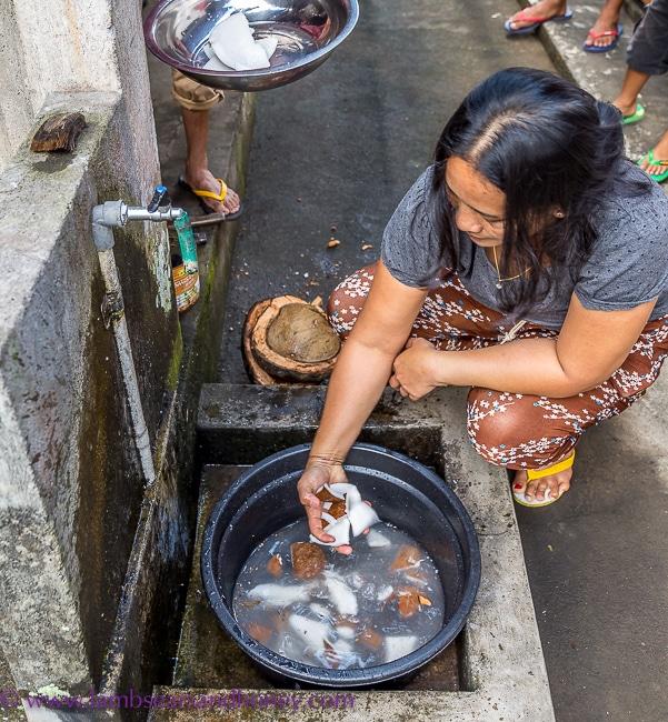 bali, rinsing coconut