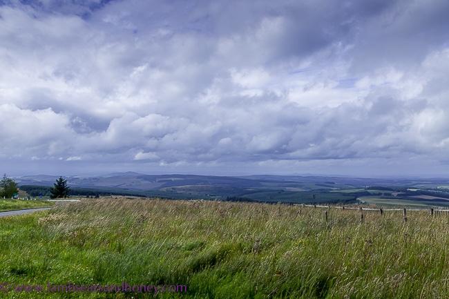 English/Scottish border, Yorkshire