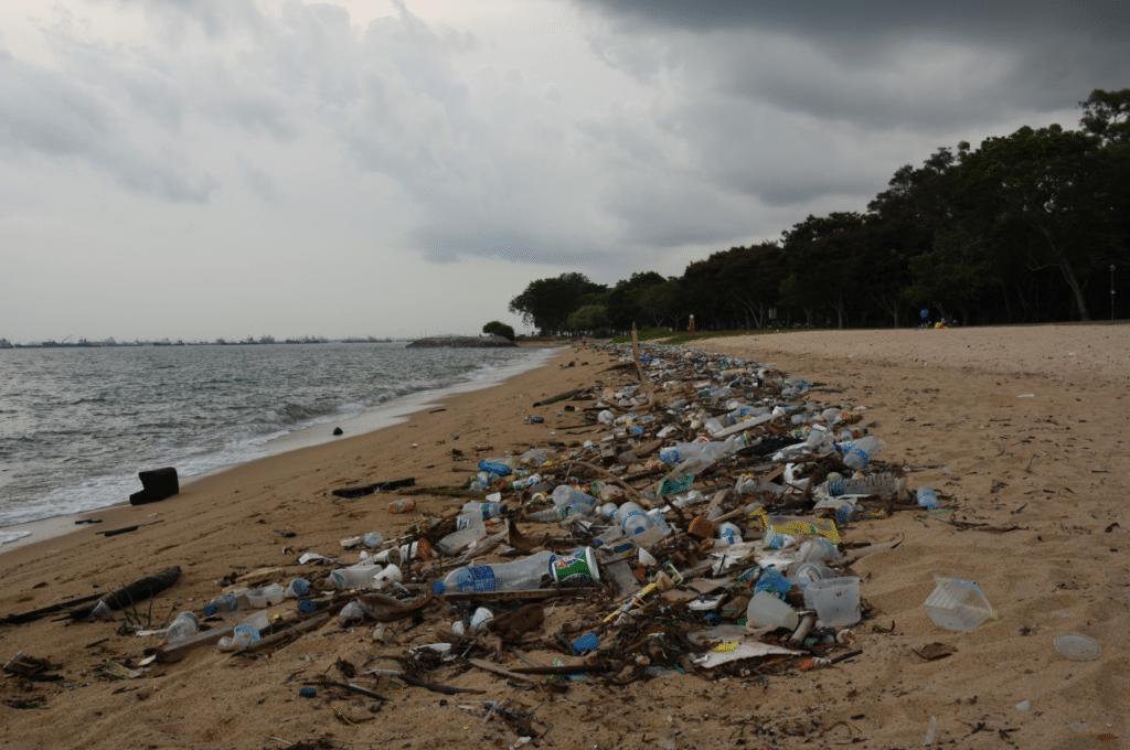 Break up With the Bag, beach litter
