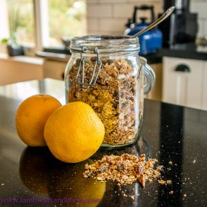 recipe for citrus granola