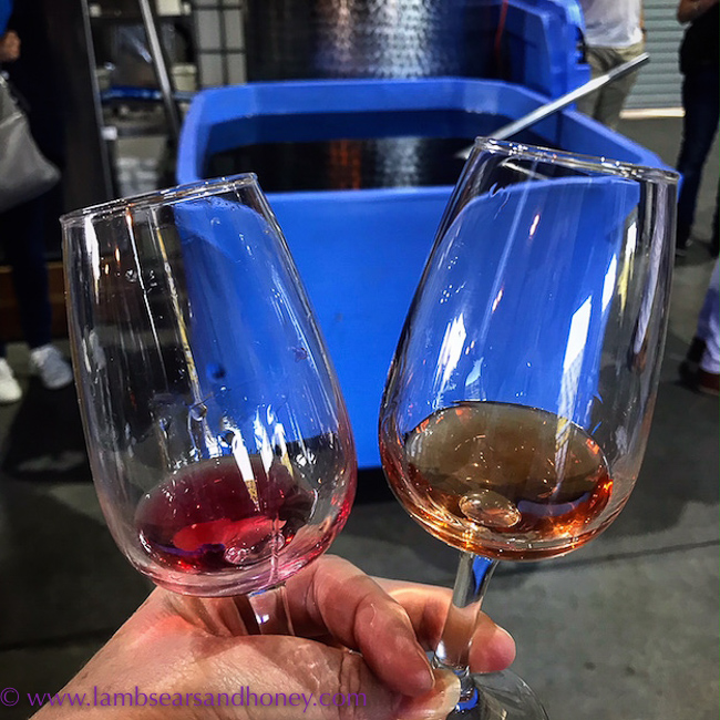 before and after tasting of slow gin, Cape Byron Distillery,