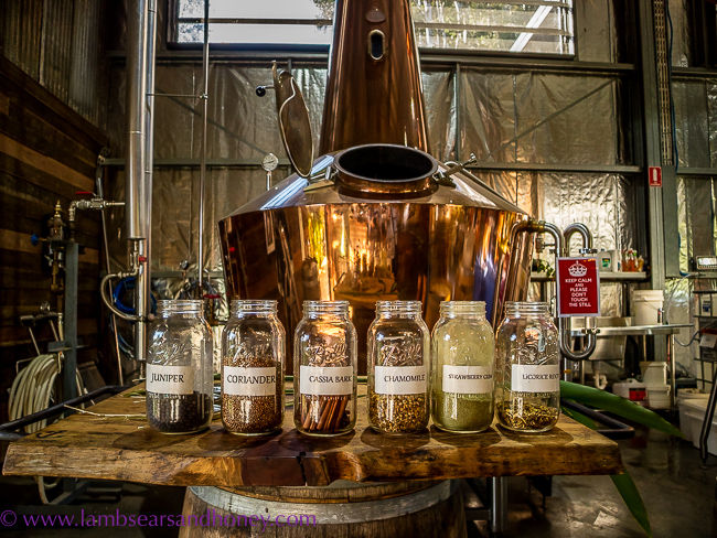 Some of the botanicals Cape Byron Distillery,