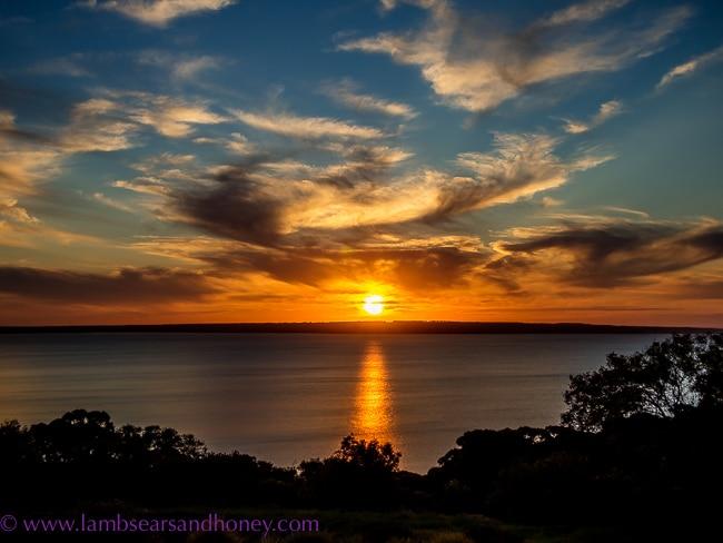 kangaroo island food, sunset food & wine