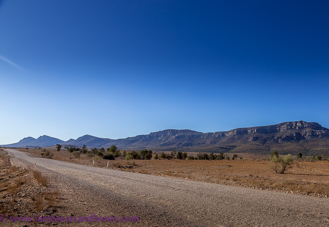 Flinders Ranges, outback road