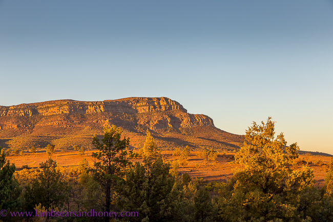 Rawnsley Park Station, Flinders Ranges - rawnsley bluff at sunset