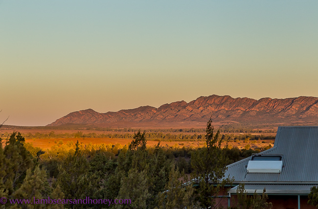 rawnsley park Station sunset,  in the Flinders Ranges