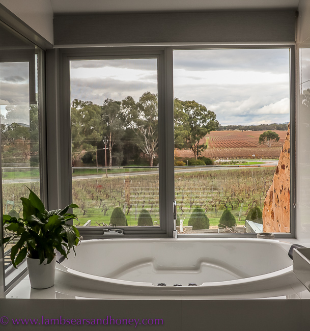 Spa bath and view, Barossa Shiraz Estate