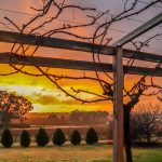 Barossa Shiraz Estate – A Luxury Stay in the Barossa Valley