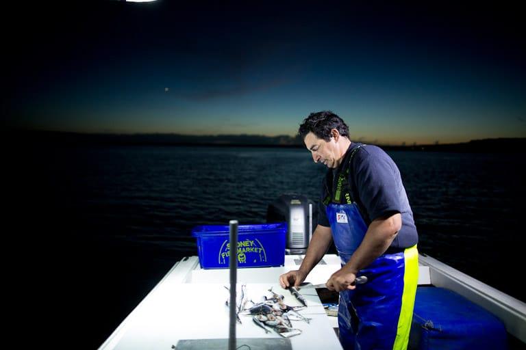 Fisherman, Snapper Fishing