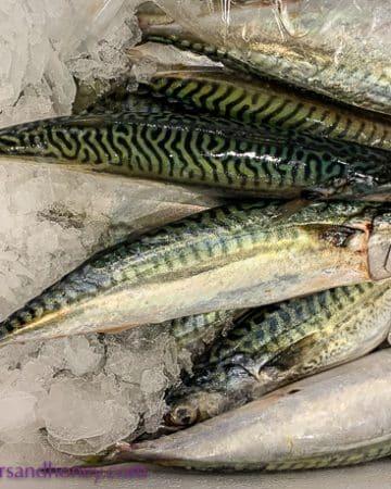 seafood, Rungis