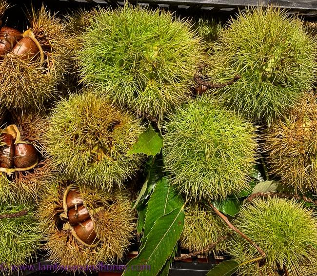 chestnuts, rungis
