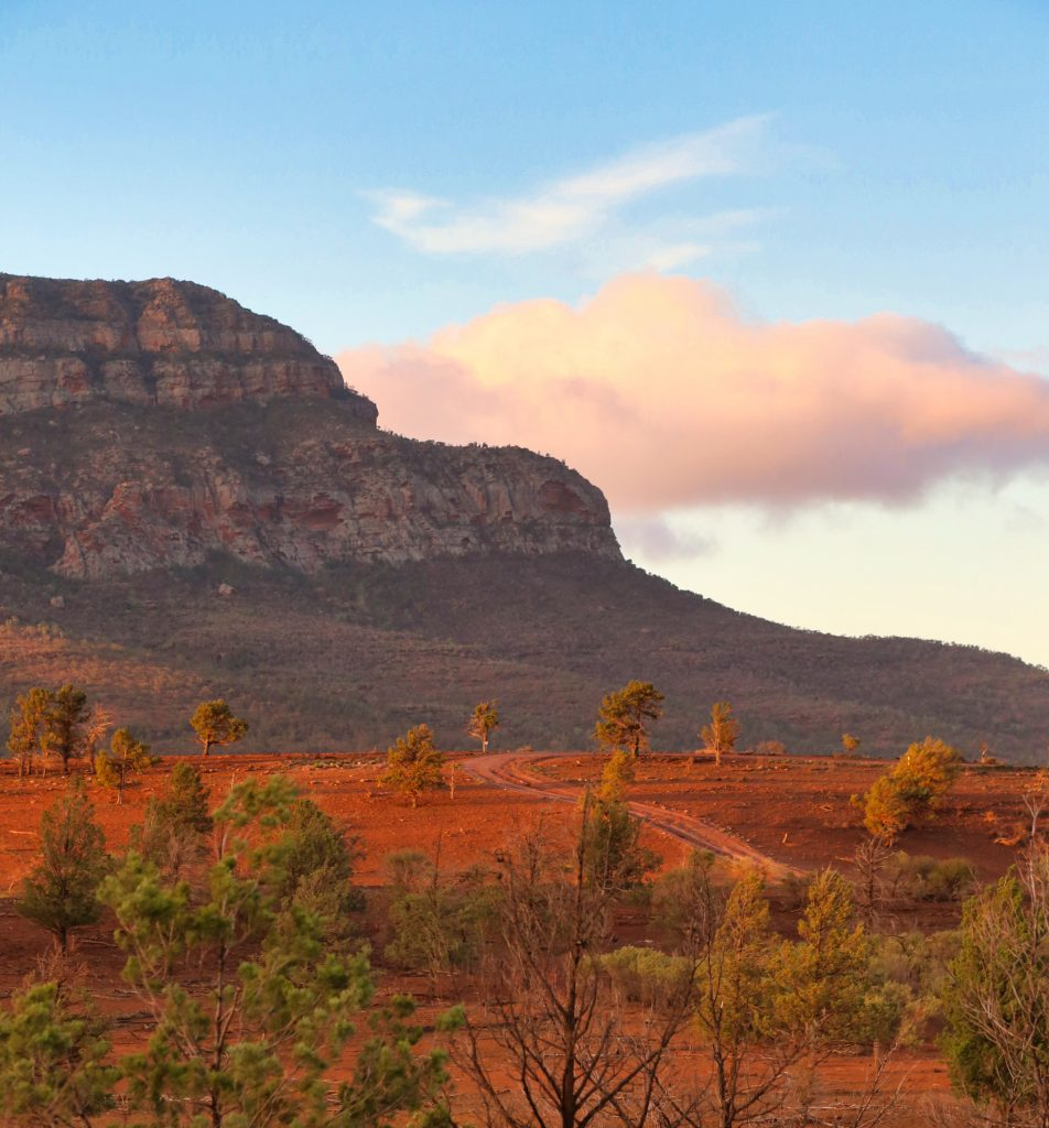 Flinders Ranges, Rawnsley Bluff